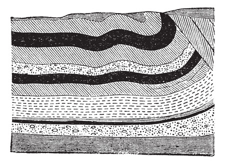 Illustration of coal beds in layers in the ground, vintage engraved illustration Ilustração