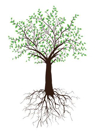 Sierlijke elegante retro abstracte bloemen boom ontwerp, bruin boom met wortels en groene bladeren op een witte achtergrond. Vector illustratie.