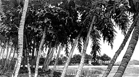 isthmus: Isthmus of Panama. the river, vintage engraved illustration. Journal des Voyages, Travel Journal, (1879-80).