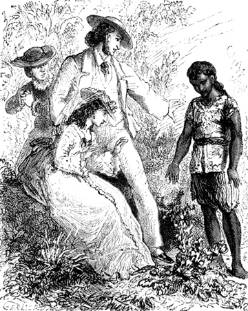dramas: The dramas of India. The flowers fall from my hands, vintage engraved illustration. Journal des Voyages, Travel Journal, (1879-80). Stock Photo