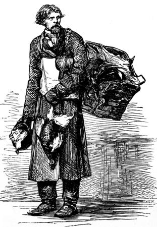 The poultry dealer, vintage engraved illustration. Journal des Voyages, Travel Journal, (1879-80). Imagens - 38205618