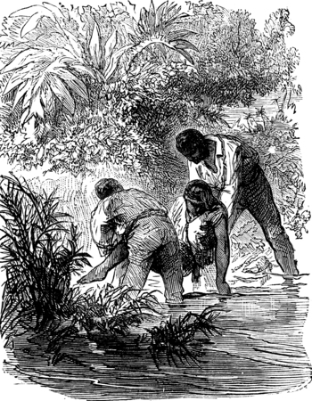 dramas: Dramas of India. Human feeling inspired them a rescue attempt, vintage engraved illustration. Journal des Voyage, Travel Journal, (1879-80).