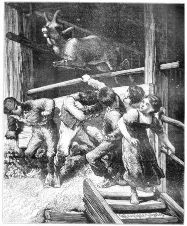captive: An increase of Chamois, composition and design of Theophile Schuler, vintage engraved illustration. Magasin Pittoresque  1874. Stock Photo