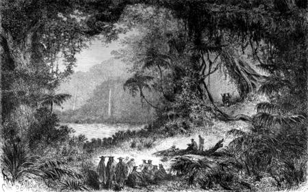 vegetation: Vegetation on the eastern side of Mount Basiri, vintage engraved illustration. Le Tour du Monde, Travel Journal, (1872).
