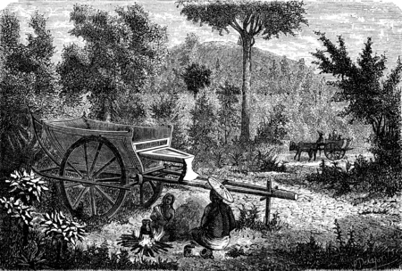 lao: Oxcart Lao, vintage engraved illustration. Le Tour du Monde, Travel Journal, (1872).