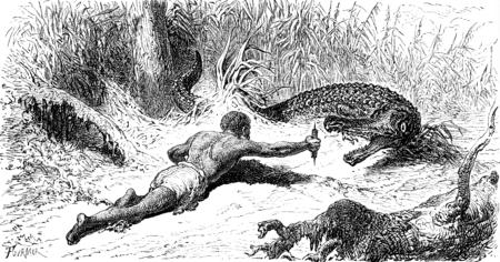 alligators: Hunting alligators, vintage engraved illustration. Le Tour du Monde, Travel Journal, (1872).