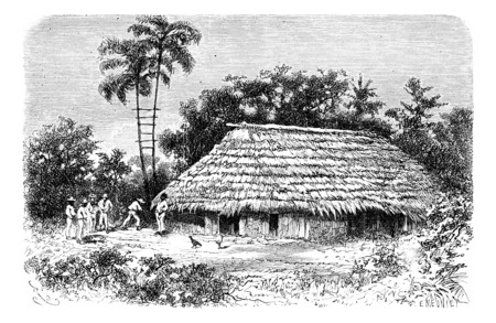 amazonas: Typical Dwelling in the Town of Cuembi in Amazonas, Brazil, drawing by Riou from a photograph, vintage engraved illustration. Le Tour du Monde, Travel Journal, 1881 Stock Photo