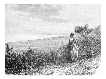 taylor: City of Haifa in Israel as Viewed by a Man from Mount Carmel, vintage engraved illustration. Le Tour du Monde, Travel Journal, 1881