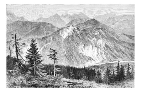 tatras: Bialki Valley as viewed from the Tatra Mountains in Tatra, Poland, drawing by G. Vuillier, from a photograph by Dr. Gustave le Bon, vintage engraved illustration. Le Tour du Monde, Travel Journal, 1881 Stock Photo