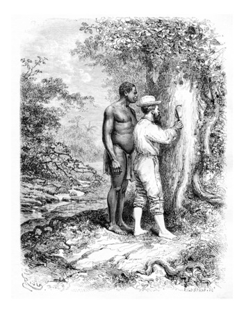 dr: Carving Initials on a Tree in Oiapoque, Brazil, drawing by Riou from a sketch by Dr. Crevaux, vintage engraved illustration. Le Tour du Monde, Travel Journal, 1880