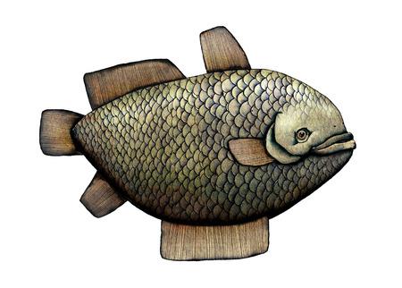 aquaculture: Fish, artistic colored illustration Stock Photo