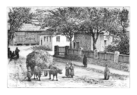 taylor: A Street in Zugdidi, Georgia, drawing by Taylor based on a photograph by Ermakoft, vintage illustration. Le Tour du Monde, Travel Journal, 1881 Stock Photo