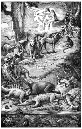 ascent: The ascent of life, vintage engraved illustration. Earth before man – 1886. Stock Photo