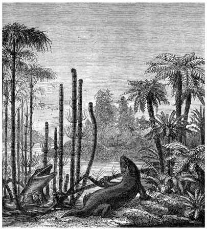 genus: The labyrinthodonts, mastodonsaurus, vintage engraved illustration. Earth before man – 1886. Stock Photo