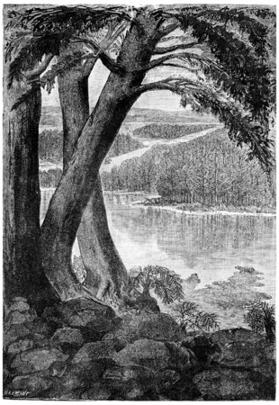 triassic: Landscape of the Triassic era, vintage engraved illustration. Earth before man – 1886. Stock Photo