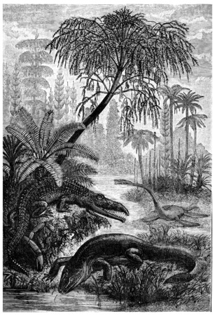 triassic: The inhabitants of the Triassic period, capitosaure, beldoux nothosaure, vintage engraved illustration. Earth before man – 1886.