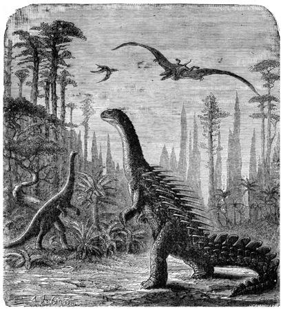 stegosaurus: Dinosaurios, Stegosaurus y Compsognathus en un paisaje Araucaria., Ilustración, grabado de época. Tierra antes que el hombre - 1886.