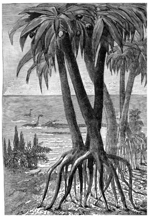 jurassic: At the edge of the sea during the Jurassic period, vintage engraved illustration. Earth before man – 1886. Stock Photo