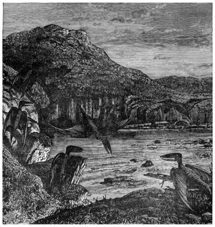 Pterodactyls, vintage engraved illustration. Earth before man – 1886.