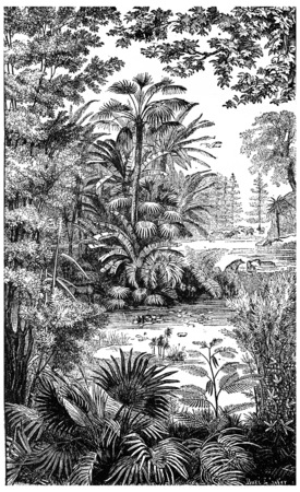 Landscape of the Miocene period in Lausanne, vintage engraved illustration. Earth before man – 1886. Banco de Imagens