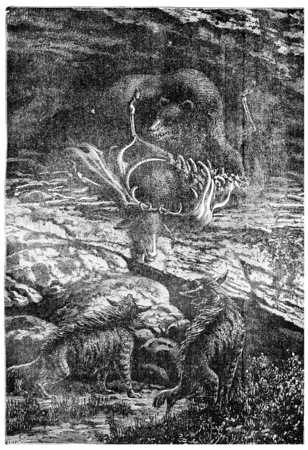 Contemporaries of primitive man: the cave bear, vintage engraved illustration. Earth before man – 1886. illustration