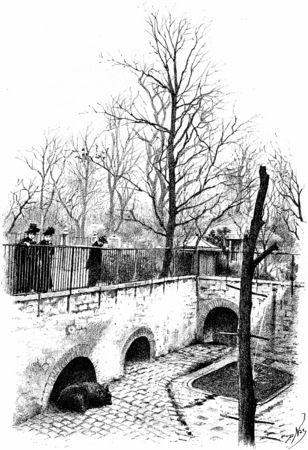 The bear pit, vintage engraved illustration. Paris - Auguste VITU – 1890. illustration
