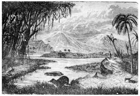 black: Landscape of the Miocene period in France, vintage engraved illustration. Earth before man – 1886.