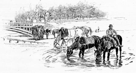 Drinking trough Solferino Bridge, vintage engraved illustration. Paris - Auguste VITU – 1890.