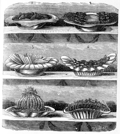 appetizers: Appetizers, vintage engraved illustration. Stock Photo
