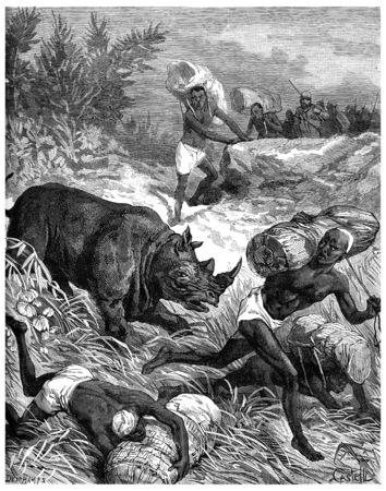carriers: Paris of Lake Tanganyika, A rhinoceros puts stir among carriers, vintage engraved illustration. Journal des Voyage, Travel Journal, (1880-81).