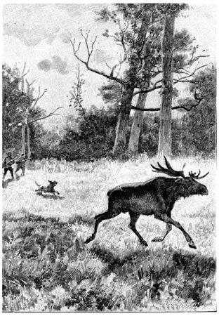 Serge and Jean did not neglect to hunt, vintage engraved illustration. Jules Verne Cesar Cascabel, 1890. Stock Photo