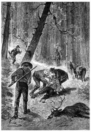 herrin: Die Yankee bei einem Unfall, Jahrgang gravierte Darstellung umgekommen waren. Jules Verne Herrin Branican 1891. Lizenzfreie Bilder