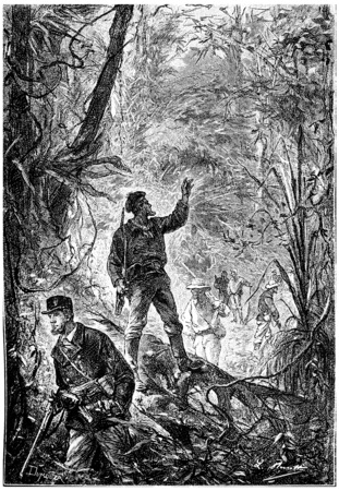 admirable: The sailors venturing sisters these admirable forests, vintage engraved illustration. Jules Verne Mistress Branican, 1891. Stock Photo