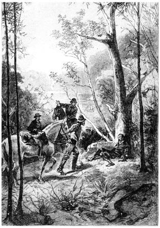 herrin: Sie sah einen Mann am Fu�e eines Baumes, Jahrgang gravierte Darstellung liegen. Jules Verne Herrin Branican 1891.