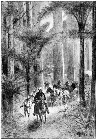 herrin: Buggys und Wagen waren praktisch an der Mühelosigkeit, Jahrgang gravierte Darstellung. Jules Verne Herrin Branican 1891.