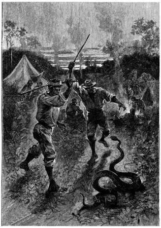 herrin: Zwei unserer Mutter t�tete ein gro�es Reptil, Jahrgang gravierte Darstellung. Jules Verne Herrin Branican 1891.