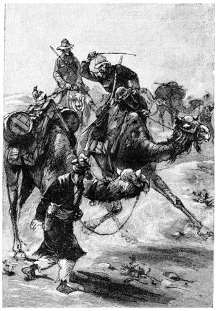 Het is niet op de kameel moet typen, vintage gegraveerde illustratie. Jules Verne Mistress Branican, 1891. Stockfoto