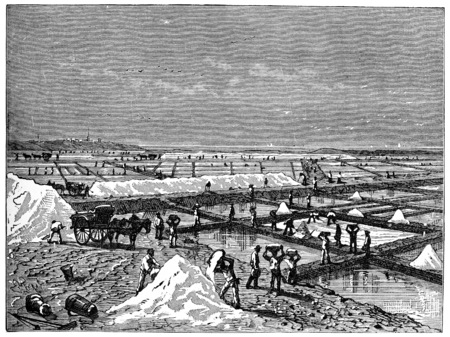 salt marsh: Lifting of salt in a salt marsh edges of the Mediterranean, vintage engraving. Stock Photo