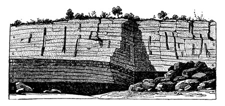 fossil: Fossil trees found standing in the coal mines of Saint-Etienne, vintage engraved illustration. Earth before man – 1886.