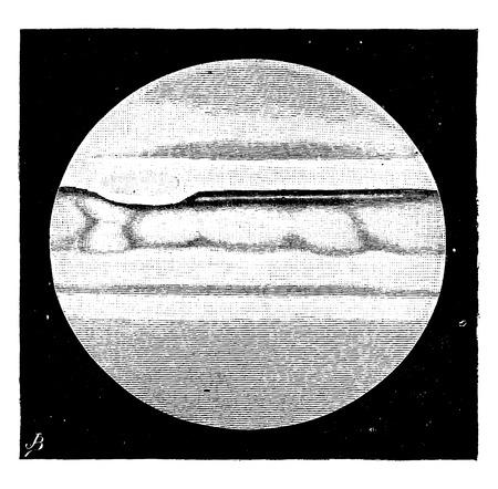 genesis: Jupiter is a world in its genesis, vintage engraved illustration. Earth before man – 1886. Illustration