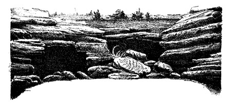Epochs of nature, Their classification, vintage engraved illustration. Earth before man – 1886.