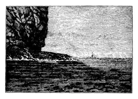 Ocean cliff, vintage engraved illustration. Earth before man – 1886.  イラスト・ベクター素材