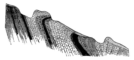 rock layer: Position of the coal seams in the career of Fins, vintage engraved illustration. Earth before man – 1886.