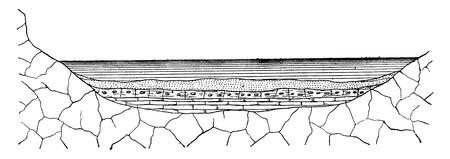 sediment: Mode of formation of land sediment, vintage engraved illustration. Earth before man – 1886.