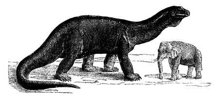 to exist: Atlantosaurus, the largest animals ever to exist, vintage engraved illustration. Earth before man – 1886.
