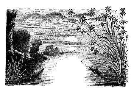 period: The Permian period, Amphibians and reptiles, vintage engraved illustration. Earth before man – 1886. Illustration