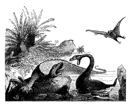 period: Scene from the Jurassic period, Ichthyosaur, plesiosaur, pterodactyls, vintage engraved illustration. Earth before man – 1886.