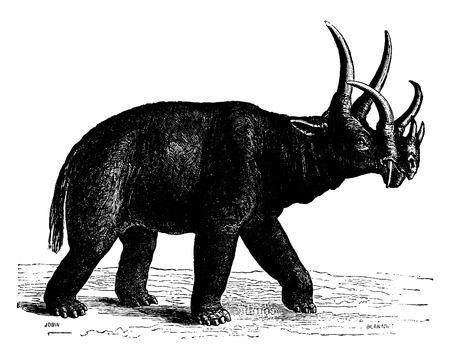 period: Dinoceras of North America, The Eocene Period, vintage engraved illustration. Earth before man – 1886. Illustration