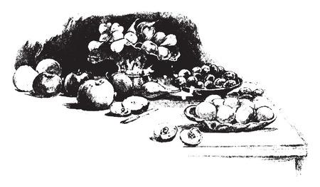 tempting: A tempting array, vintage engraved illustration.