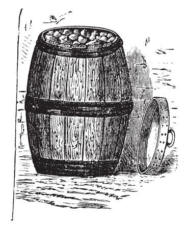 cold storage: Household cooler, vintage engraved illustration.